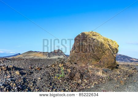 Volcanic Bomb In Front Of Volcano Montana Colorada In Lanzarote, Tinajo