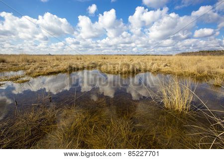 Scene with small lake in steppe