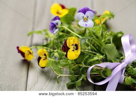 Pansy flower with gift bow on wooden background