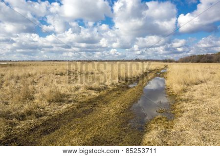 Scene with rut road in steppe at a nice spring day