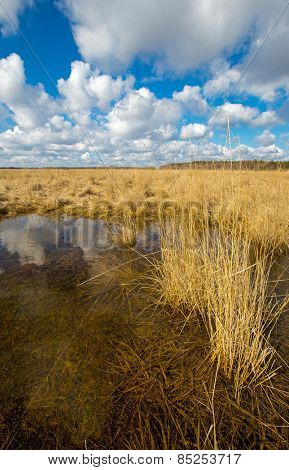 Small lake in spring steppe
