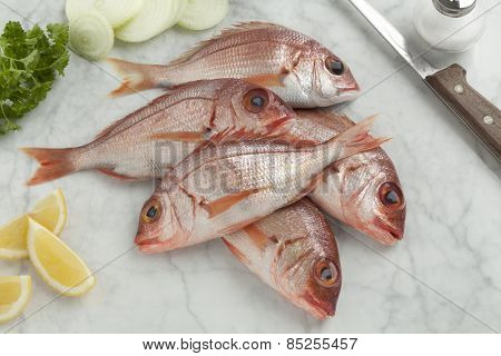 Fresh raw small red snappers on the table