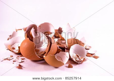 Pile Of Broken Egg Shells