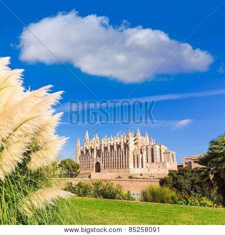Majorca Palma Cathedral Seu Seo of Mallorca at Balearic Islands Spain