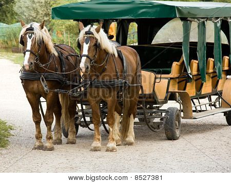 Vehicle with horses