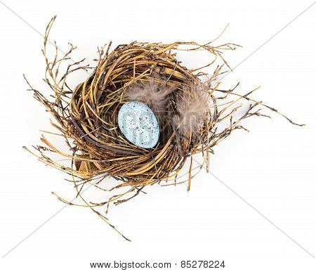 Easter Egg In Birds Nest