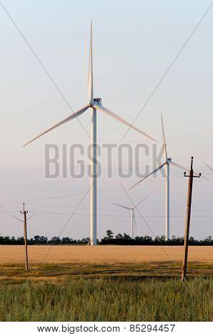A wind farm in the wide spread field
