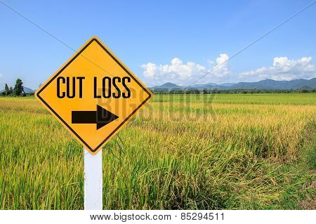 Yellow Traffic Sign Text For Stop Loss And Green Paddy Rice Background