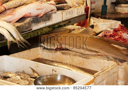 Fish Market In Singapore