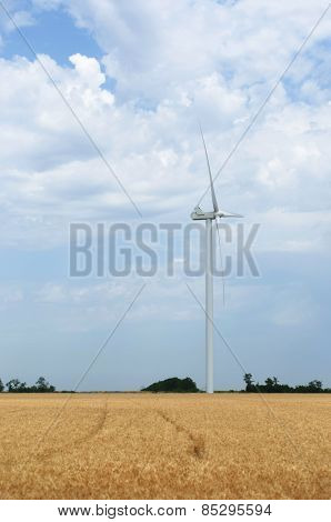 A wind farm in the wide spread field