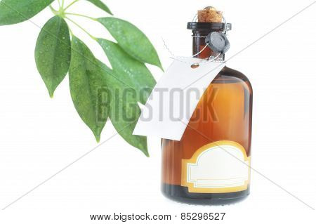 Bottle With Body Oil  And Leaves