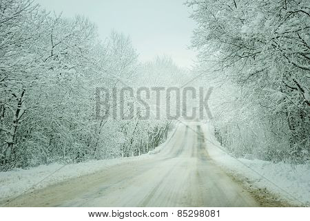 Cold  Landscape Of A Road Through Forest