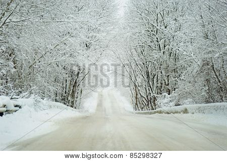 Winter Landscape Of A Road