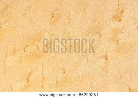 Birdseye Maple Wood Texture