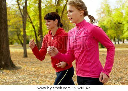 Morning Run