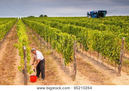 Harvesting Contrast
