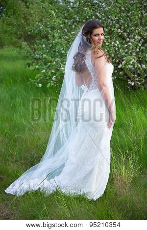 Pretty Woman In Wedding Dress With Veil In Blooming Summer Garden