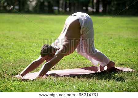 Downward Facing Dog Yoga Pose In Park
