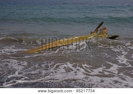Wooden flotsam on caribbean beach