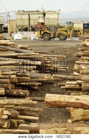 Logging Yard