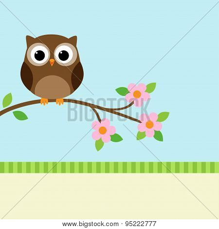 Owl On Blooming Branch