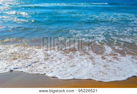 Golden Shore And Blue Water