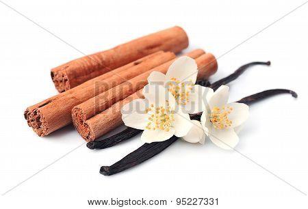Vanilla Sticks And Cinnamon