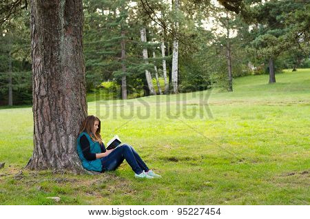 Teenage Girl Sitting Under The Tree And Reading Book On Cloudy Autumn Day