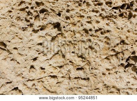 Weathered Sandstone Surface. Seacoast. Crimea, Sevastopol.
