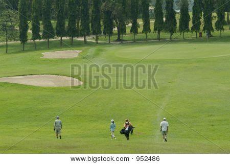 Jogadores de golfe, caminhando em direção a verde