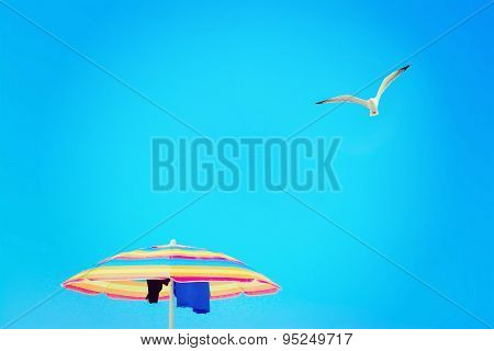 Parasol Under A Flying Seagull