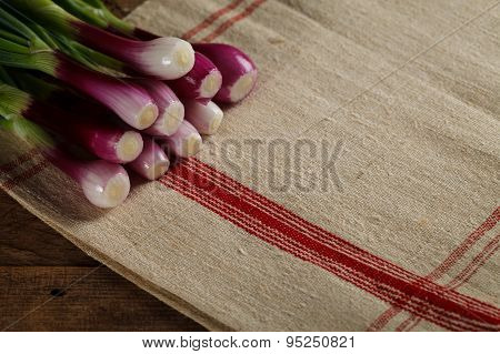 Bunch Of Onions On The Tablecloth
