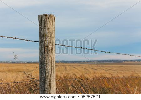 Fence Post in the Prairie