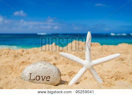 Starfish With Sign