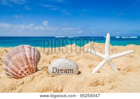 Starfish With Seashell And Sign