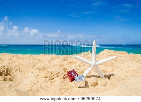 Starfish On The Sandy Beach