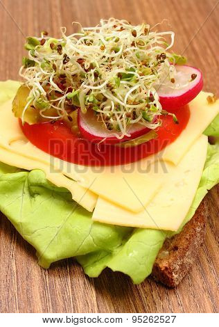 Vegetarian Sandwich With Alfalfa And Radish Sprouts