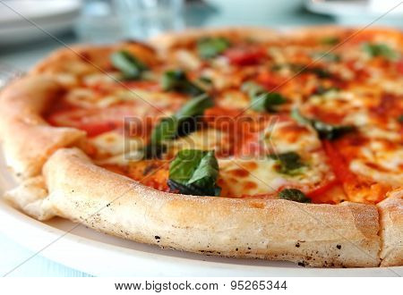 Delicious Crust Of Pizza Margherita