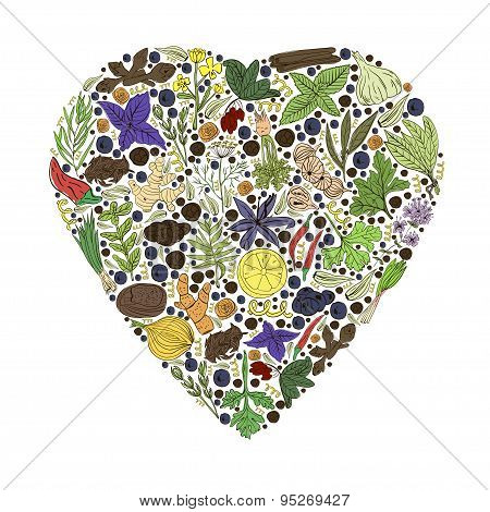 Hand Drawn Vector Illustration Of Heart With Spices And Herbs