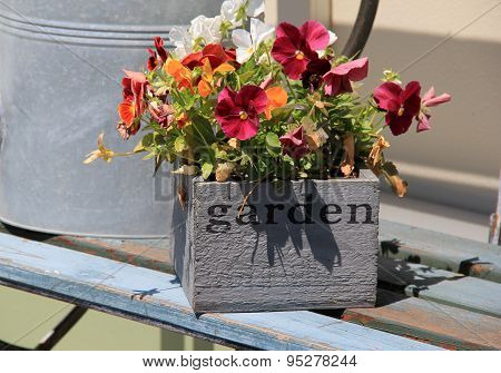 Flower box with colorful pansies on wood bench