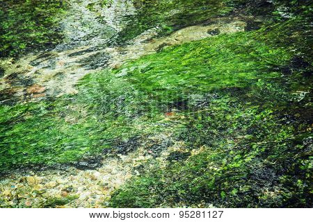 Clear Water Flowing In The Creek