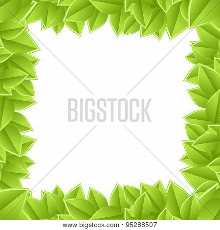 plant frame on a white background