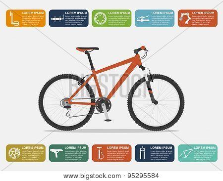 Bike Infographic