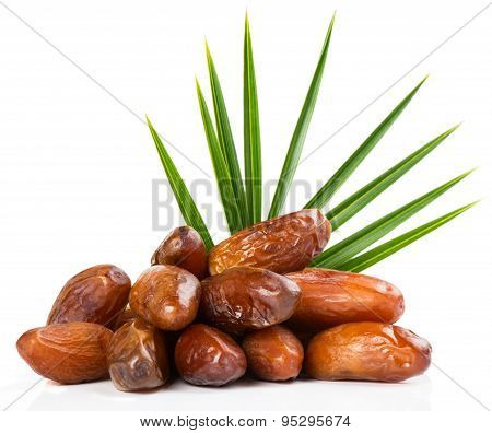 Palm Leaf And Dates