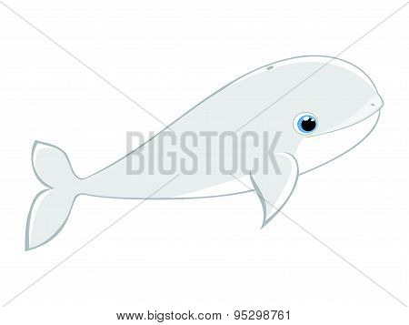 Baby beluga whale vector illustration