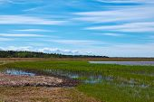 foto of wetland  - wetland north coastline and blue sky with white clouds - JPG