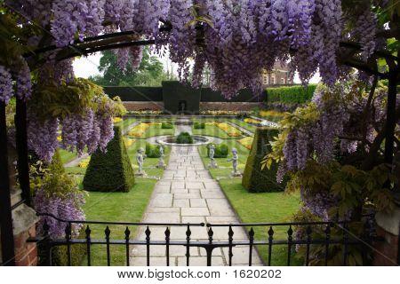 Garden At Hampton Court