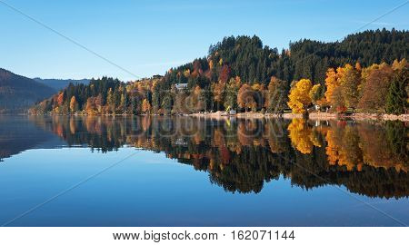 Autumn forest reflected in the surface of the lake Titisee, Germany