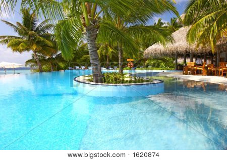 Nice Tropic Pool