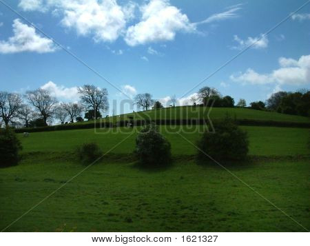 English Country Side